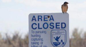 Shrinking hunting population draws aggressive response from Trump administration