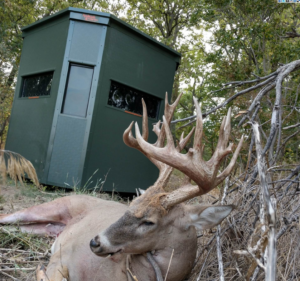Hunting Blind Without Getting Bored