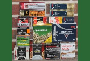 .22LR Ammunition Shootout: Two Rifles, 17 Brands