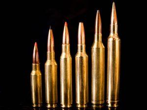13 Popular 6.5mm Rifle Cartridges