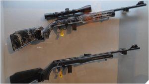 Maryland, New Hampshire Advance Gun Control Bills