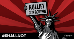 Brady Gun Group Challenges Nevada Counties Over Sanctuary Resolutions