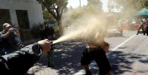 CA Capitol Groundskeepers Want Pepper Spray Following Attacks