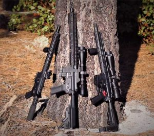 Franklin Armory's New 350 Legend Rifles