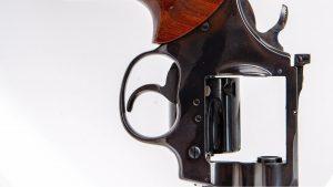 Washington D.C. Statehood is a Gun Control Issue