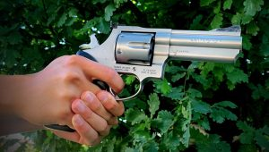 What IS a Revolver and Why Do Gun Owners Love Them?